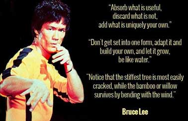 Absorb what is useful, discard what is not, add what is uniquely your own. - Bruce Lee