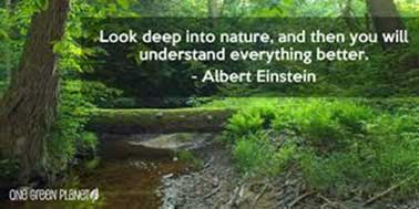 Look deep into nature, and then you will understand everything better - Albert Einstein