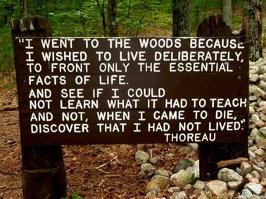 I went to the woods because I wished to live deliberately... - Thoreau