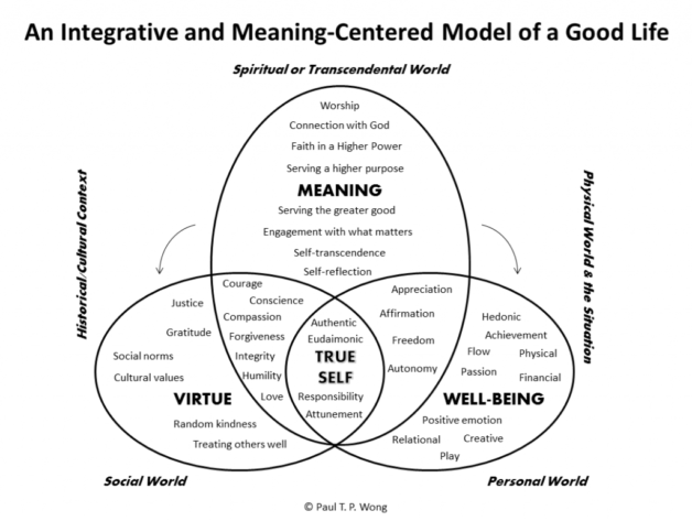 An Integrative and Meaning-Centred Model of a Good Life
